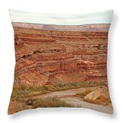 San Juan River Throw Pillow