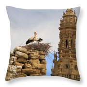 Santo Domingo De La Calzada Throw Pillow