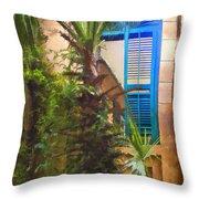 Savannah Window Impasto Throw Pillow