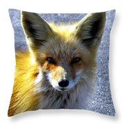 Say What Human? Throw Pillow