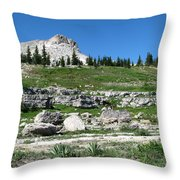 Scapegoat Amphitheater Throw Pillow
