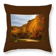 Scene Of Gold Throw Pillow