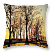 Scenic Sunset Throw Pillow