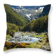 Scenic Valley In New Zealand Throw Pillow