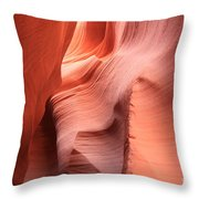 Sea Of Sandstone Throw Pillow