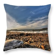 Sea Shell Sea Shell By The Sea Shore At Presque Isle State Park Series Throw Pillow