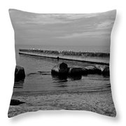 Seagull Serenity Throw Pillow