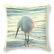 Searching For Supper Throw Pillow