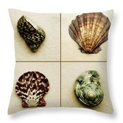 Seashell Composite Throw Pillow