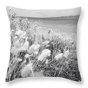 Seaside Grass Throw Pillow