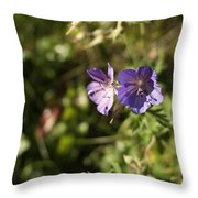 Seasons Finish Throw Pillow