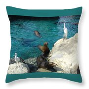 Seaworld Sea Lions Throw Pillow