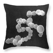 Sem Of Streptococcus Throw Pillow