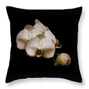 Sepia Orchids Throw Pillow