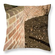 Serpentine Wall University Of Virginia Throw Pillow