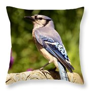 Shades Of Blue Throw Pillow by Lori Tambakis