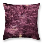Shadow Path Throw Pillow