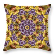 Kaleidoscope 43 Throw Pillow