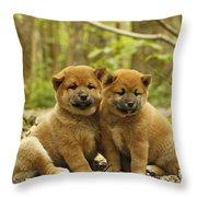 Shiba Inu Puppies Throw Pillow