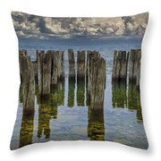 Shore Pilings At Fayette State Park Throw Pillow