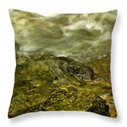 Shoreline Throw Pillow