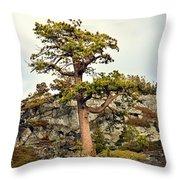 Sierra Landscape Throw Pillow