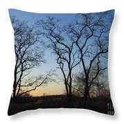 Silhouette At Rye Lake Throw Pillow