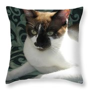 Silktapestrycatstm Throw Pillow