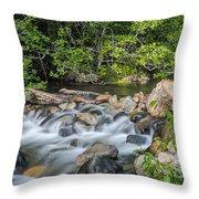 Silky Water Throw Pillow