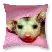 Silly Gal Throw Pillow