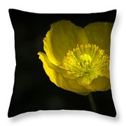 Simple Solitude Throw Pillow