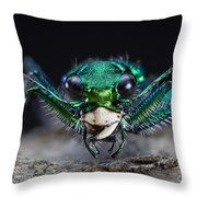 Six-spotted Green Tiger Beetle Throw Pillow