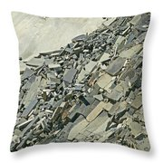 Slipping And Sliding Throw Pillow