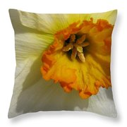 Small-cupped Daffodil Named Barrett Browning Throw Pillow