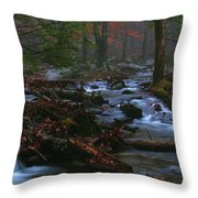 Smoky Mountain Color Throw Pillow