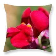 Snapdragon Named Red Chimes Throw Pillow