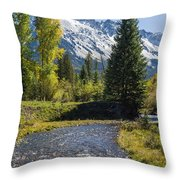 Sneffles And Stream I Throw Pillow