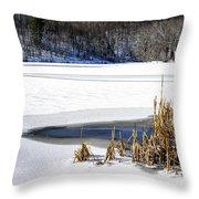 Snow On Lake Throw Pillow