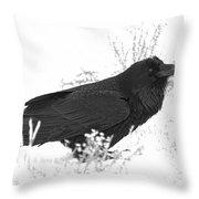Snow Raven Throw Pillow