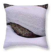Snowviews Throw Pillow