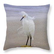 Snowy Egret At The Beach Throw Pillow