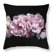 Soft Pink Blossom Throw Pillow