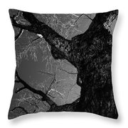 Solid Throw Pillow