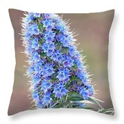 Some Of The Colors Of Spring Throw Pillow