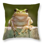 Someone Watching Over Me Throw Pillow by Mimi Ditchie