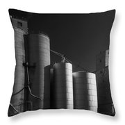 Spangle Grain Elevator Throw Pillow