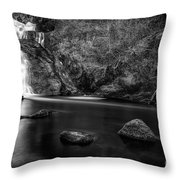 Spectacle E'e Waterfall Throw Pillow