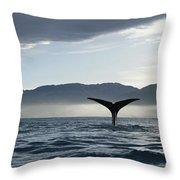 Sperm Whale Physeter Macrocephalus Throw Pillow