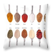 Spices Collection On Spoons Throw Pillow