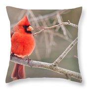 Splash Of Red Throw Pillow